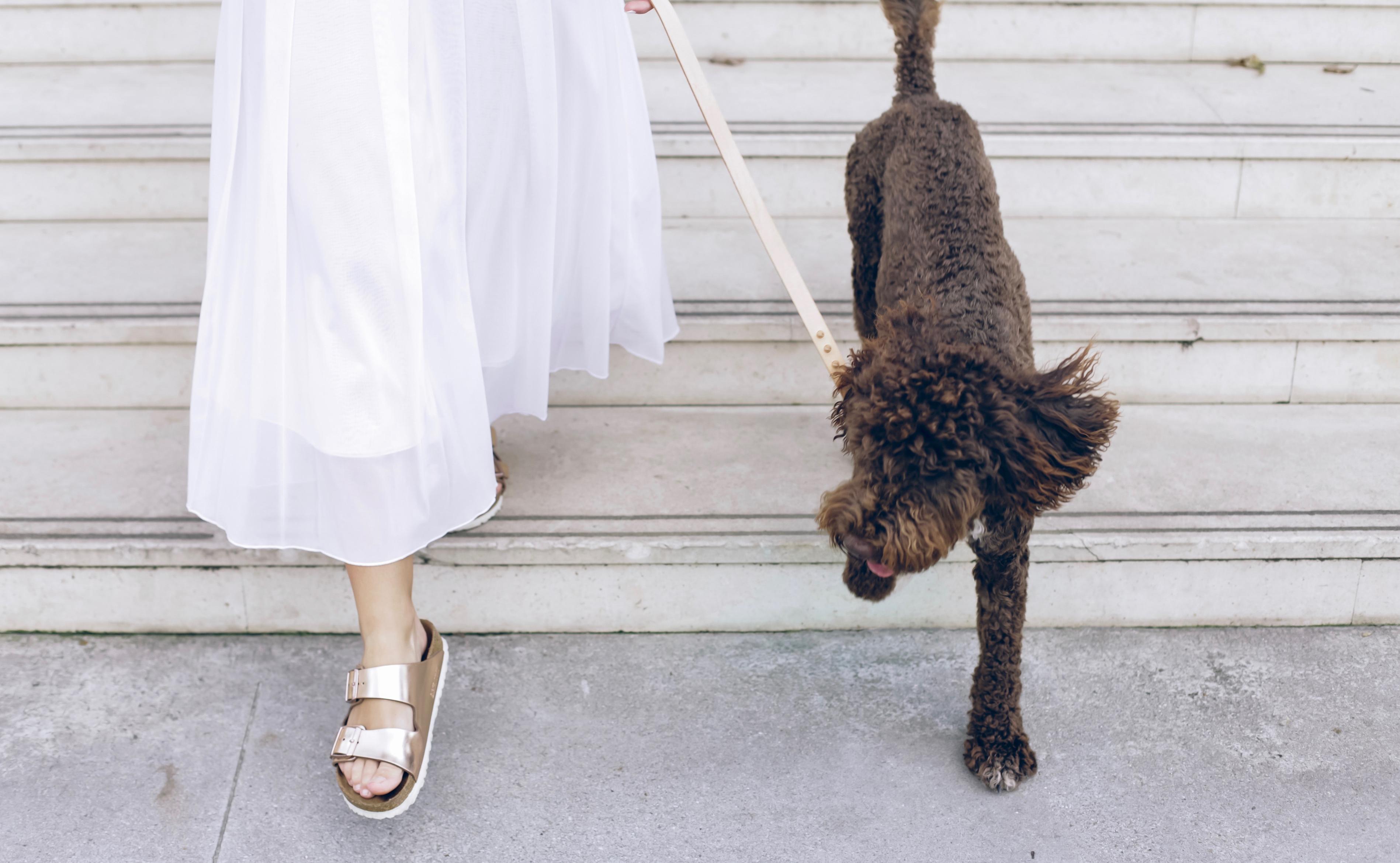 Iconic white dress: i 3 accessori indispensabili per abbinarlo al meglio immagine
